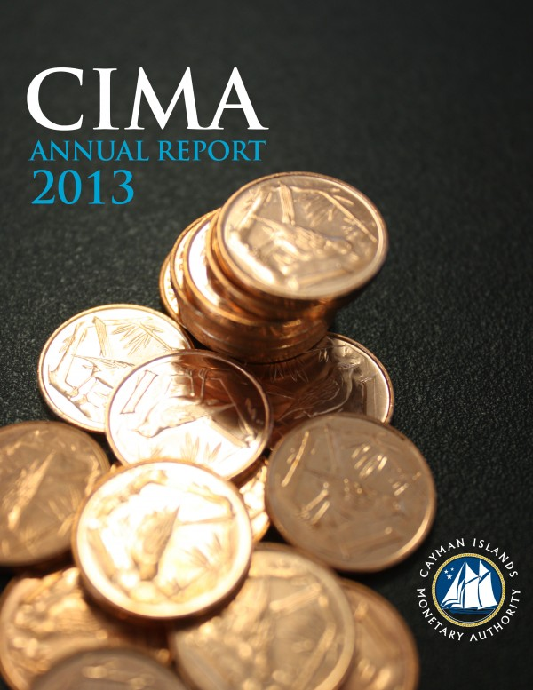 Annual Report and Audited Financial Statements - Year Ended June 2013