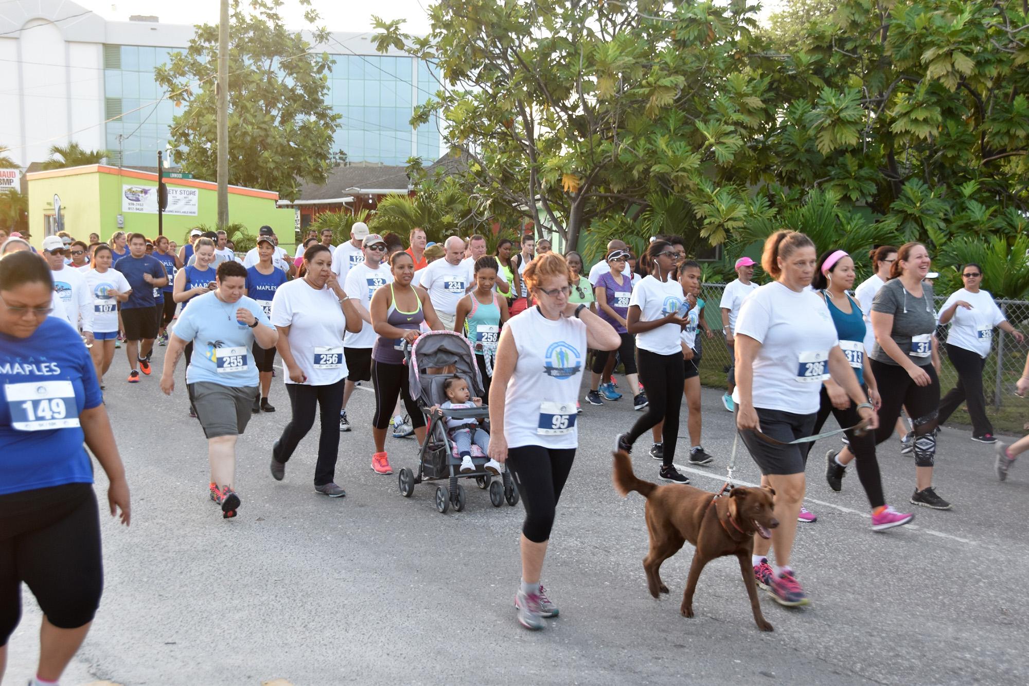 Participants at 2017 Walk/Run