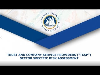 TCSP Risk Assessment